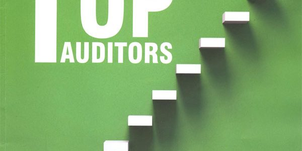 Who are India's Top Auditors ?